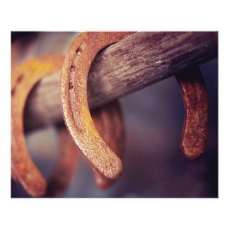 "Horseshoes on Barn Wood Cowboy Country Western 4.5"" X 5.6"" Flyer"