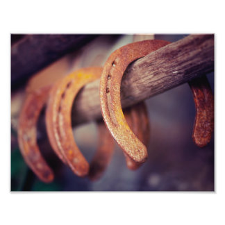 Horseshoes on Barn Wood Cowboy Country Western Photo