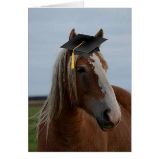 Horsey Graduation Card