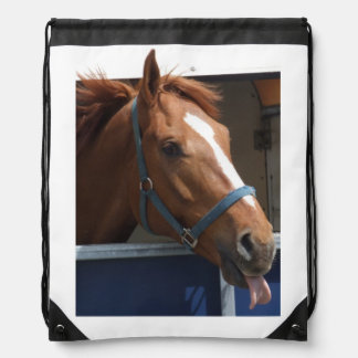 Horsing around - cheeky chestnut horse. drawstring backpack
