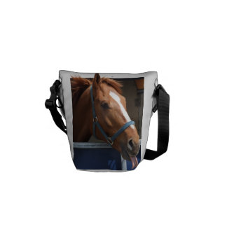 Horsing around - cheeky chestnut horse. messenger bags
