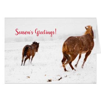 Horsing Around Season's Greetings Card