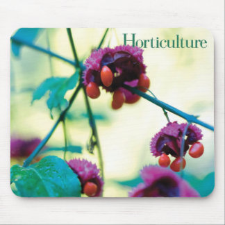 Horticulture Mousepad (Euonymous americana)