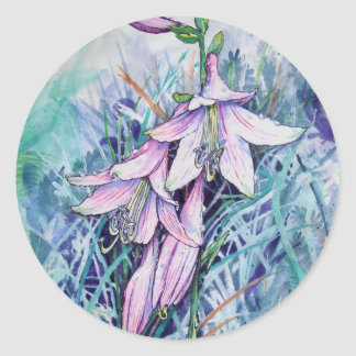 Hosta in bloom classic round sticker