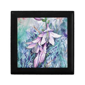 Hosta in bloom gift box
