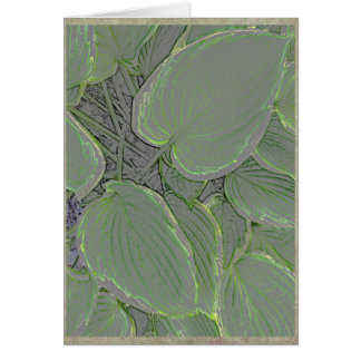 Hosta leaves in a summer garden card