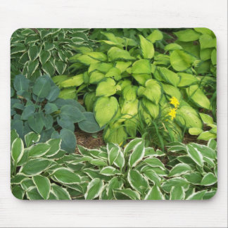 Hosta Mouse Pad