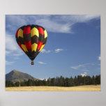 Hot Air Balloon near Wanaka, South Island, New