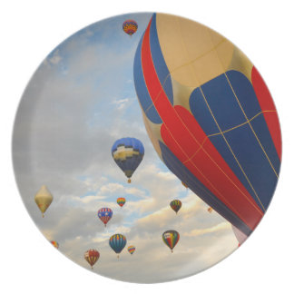 Hot Air Balloon Race in Reno Nevada Plate
