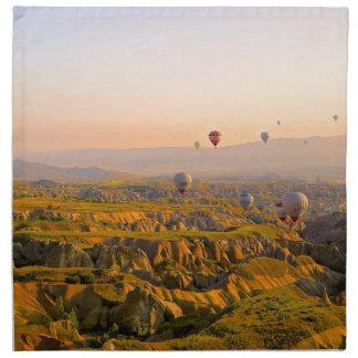 Hot Air Balloons Cloth Napkins