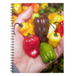 Hot crops notebooks