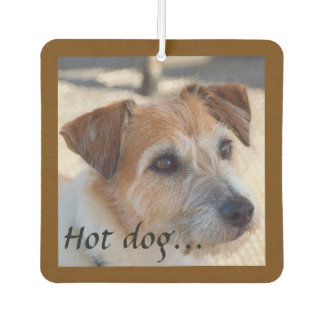 Hot dog car air freshener
