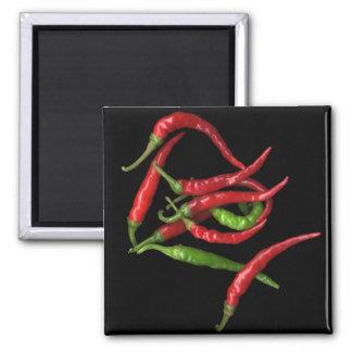 Hot Pepper 1 Square Magnet