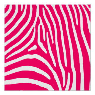 Hot Pink and White Zebra Print