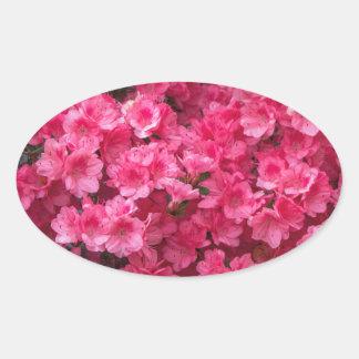 Hot Pink Azalea Blossoms Oval Sticker