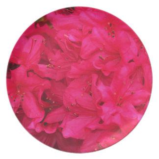 Hot Pink Azalea Flowers Dinner Plate