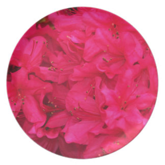 Hot Pink Azalea Flowers Dinner Plates