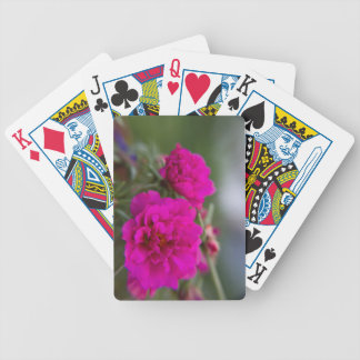 Hot pink begonia flowers poker deck