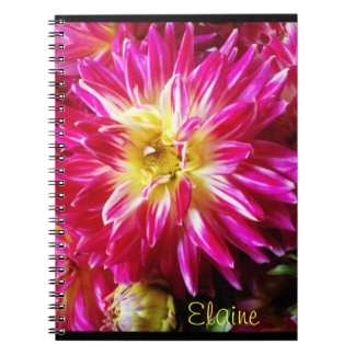 hot pink dahlia notebook