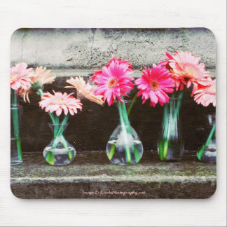 Hot Pink Daisies in Vases Mouse Pads