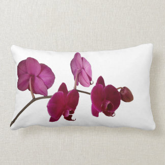 Hot Pink Dendrobium Orchid - Orchids Background Lumbar Cushion