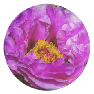 Hot pink flower plate