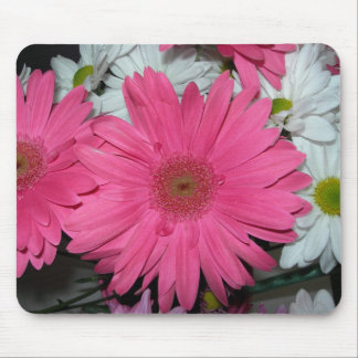 Hot Pink Gerber Daisy Mousepad