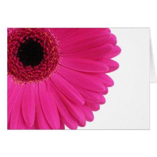 Hot Pink Gerbera Card