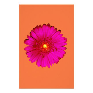 Hot Pink Gerbera Daisy on Orange Personalized Stationery