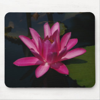 Hot Pink Lotus Waterlily Mouse pad