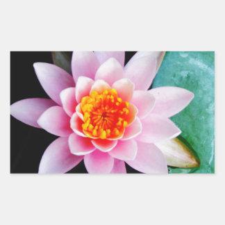 Hot Pink & orange lotus water lily flower Rectangular Sticker