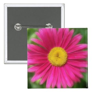 Hot Pink Painted Daisy Buttons