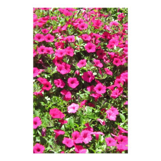 Hot Pink Pansies Customized Stationery