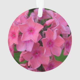 Hot Pink Phlox Flowers Ornament