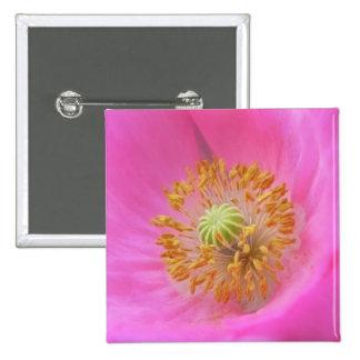 Hot Pink Poppy Flower Pinback Buttons