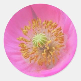 Hot Pink Poppy Flower Round Sticker