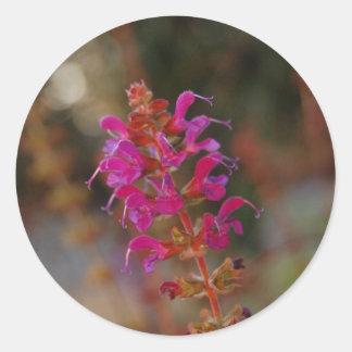 Hot Pink Round Stickers