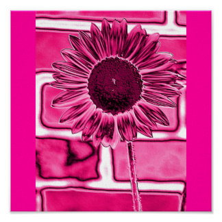 Hot Pink Sunflower Art Print