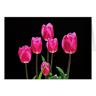 Hot Pink Tulips Card