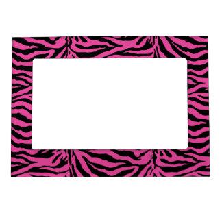 Hot Pink  Zebra Skin Texture Background Magnetic Frame
