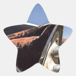 Hot rod star sticker