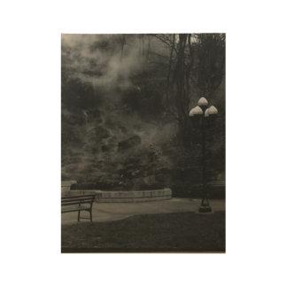 Hot Springs AR Wood Poster