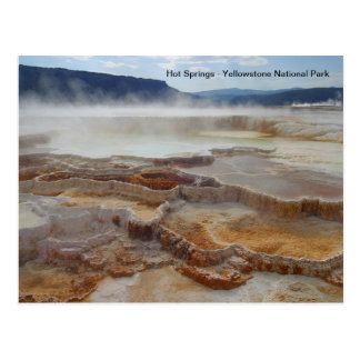 Hot Springs in yellowstone national park USA Postcard