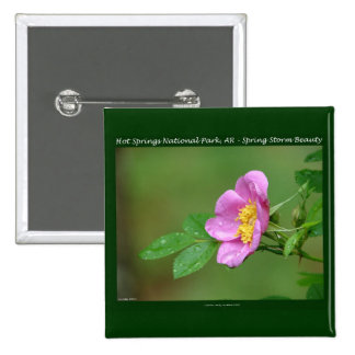 Hot Springs National Park AR Wild Rose Gifts Pinback Button