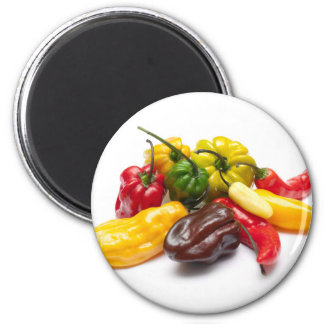 Hottest chilies 6 cm round magnet