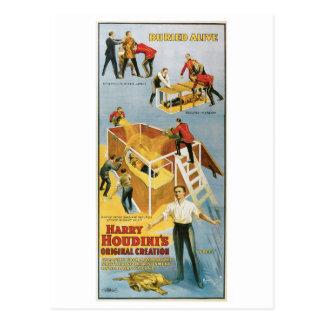 Houdini ~ Buried Alive Vintage  Escape Artist Postcard