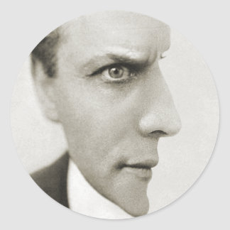 Houdini Optical Illusion Classic Round Sticker