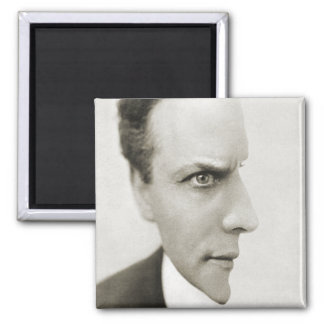 Houdini Optical Illusion Magnet