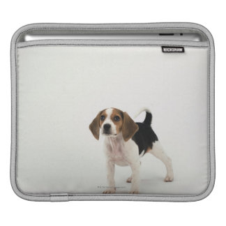 Hound Dog Sleeves For iPads