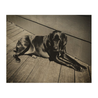 Hound Hanging Around Wood Wall Decor